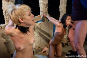 Devora golden shower escorts Walker Mill
